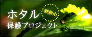 ホタル保護プロジェクト